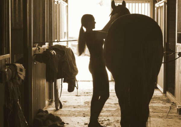 Silhouette of young horsewomen owner harnessing the stallion in stable. Vertical image with vintage filter.