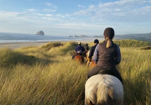 Riding-in-sea-grass-gorgeous-view