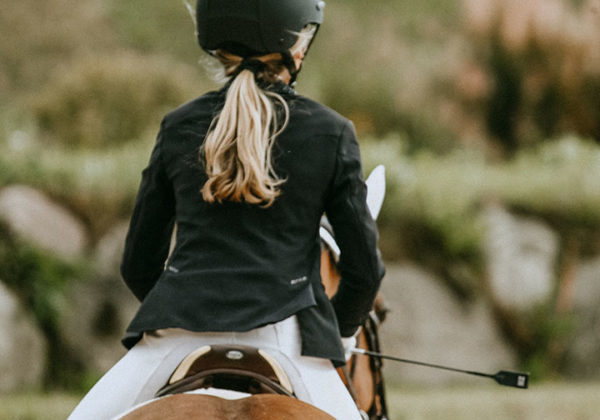 small horse and rider_apparel